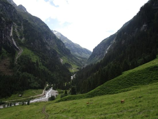 IMG_1382 (Small)